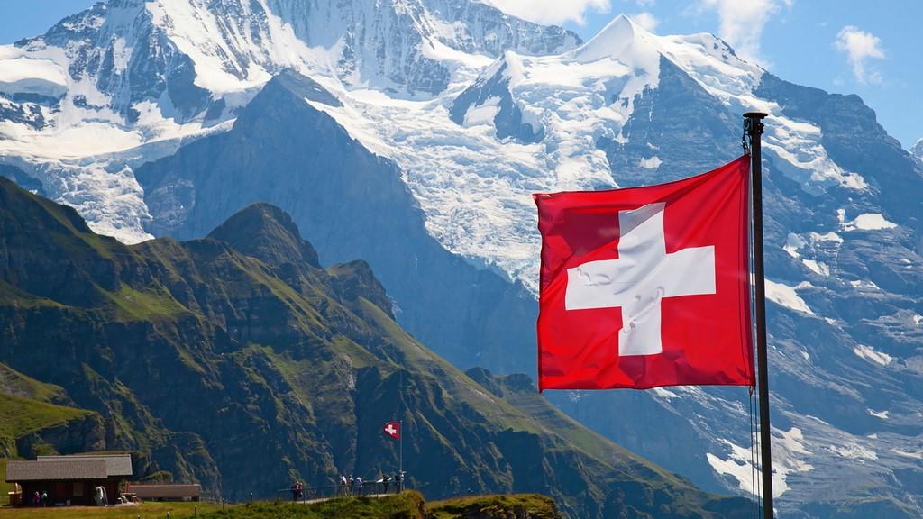 tchat sans inscription suisse)